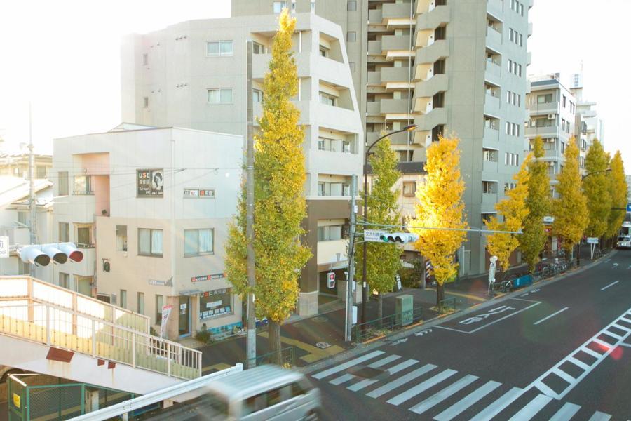 駅から徒歩10分。通り沿いのイチョウ並木は秋になると鮮やかに色づき、目にも楽しめます