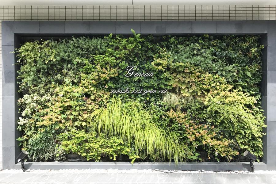 壁面緑化をテーマとしており、敷地内は鮮やかな木々に彩られています