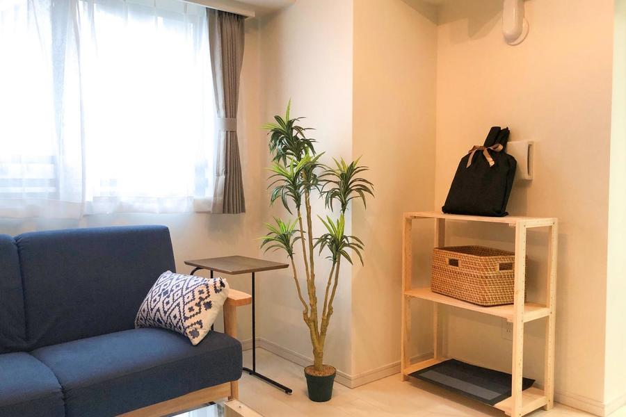 ソファ周りにはサイドテーブルや観葉植物など、生活を彩るアイテムが