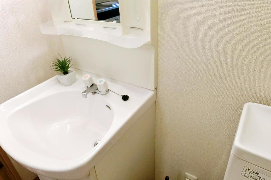 大きめボウルが特徴の洗面台。小物置き場も多く使い勝手抜群