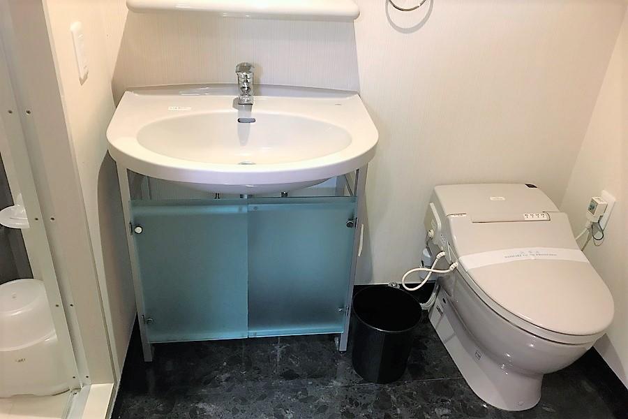 透け感のある扉が印象的な洗面台と人気のシャワートイレ