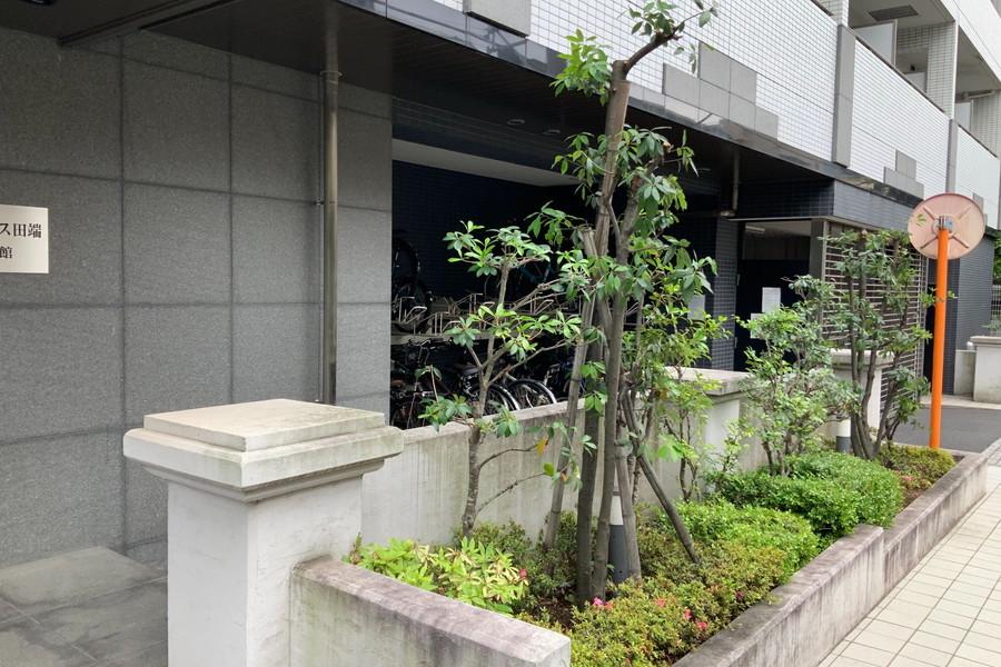敷地内の植え込みは鮮やかな緑。都会生活に潤いを与えてくれます