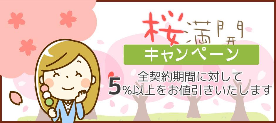 桜満開キャンペーン