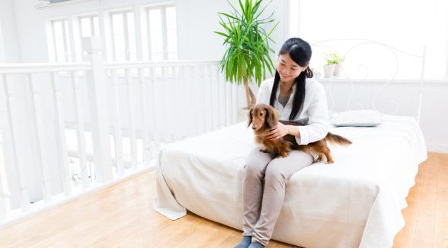 ペット可のマンスリーマンションを利用する際の注意点